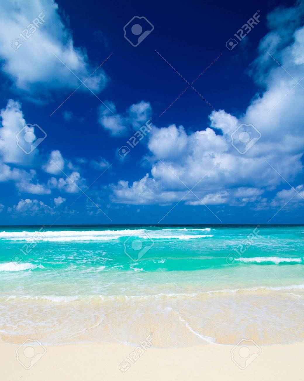 Caribbean Beach and Palm tree  .Paradise. Vacation and Tourism concept. Stock Photo - 32640742