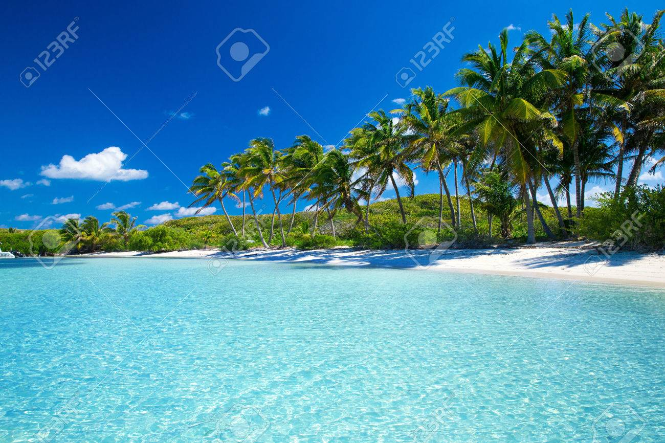 Tropical beach images 37
