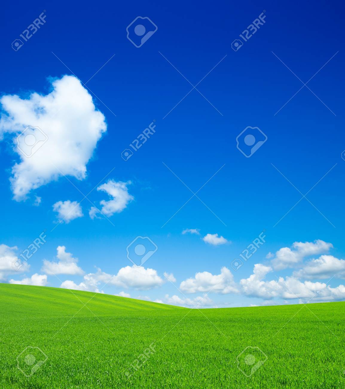 green field and blue sky - 39605387
