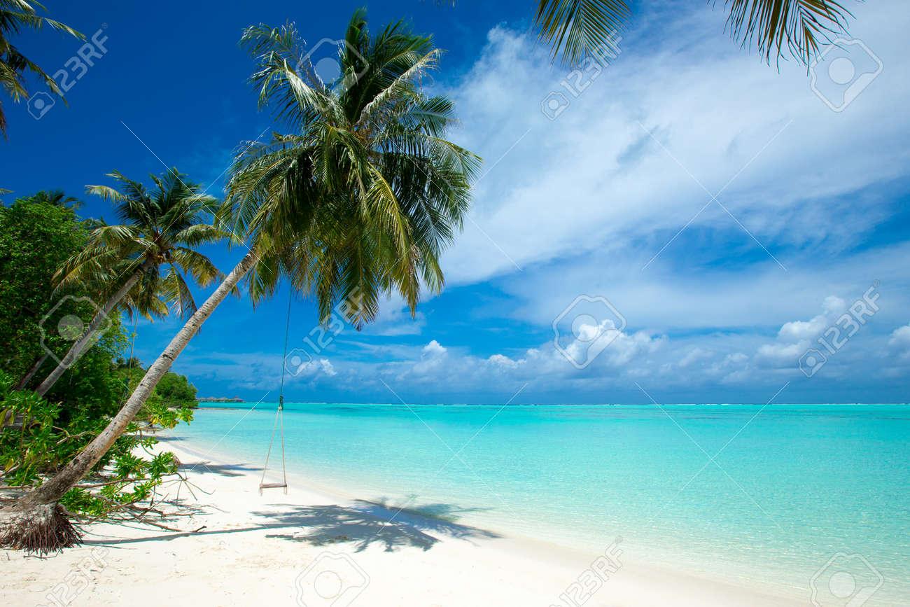 tropical Maldives island with white sandy beach and sea - 121206850