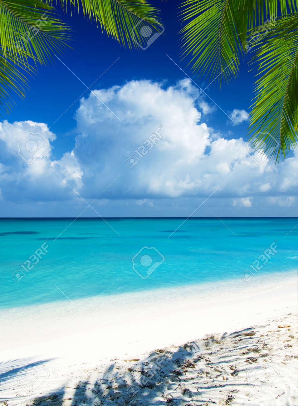 beach and tropical sea. tropical island - 134278261
