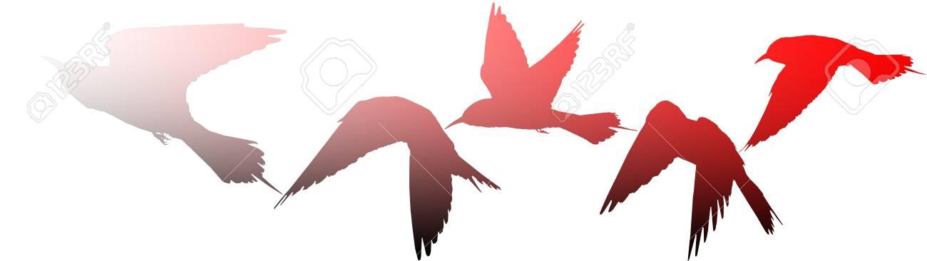 Silhouettes Of Birds As A Symbol Of War Creativity Symbols Stock