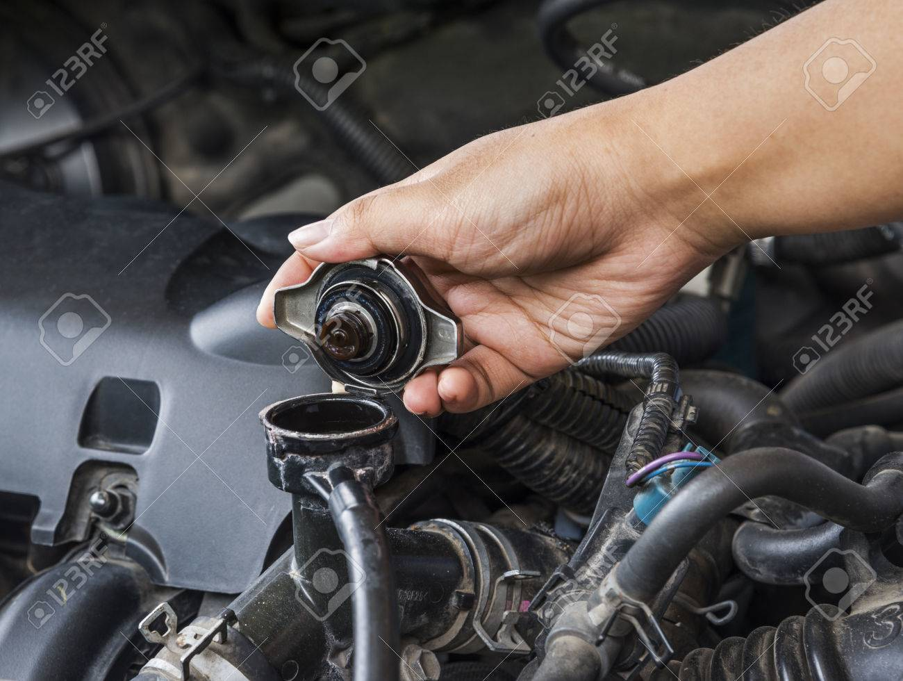 Check the radiator car for car care. Stock Photo - 28634683