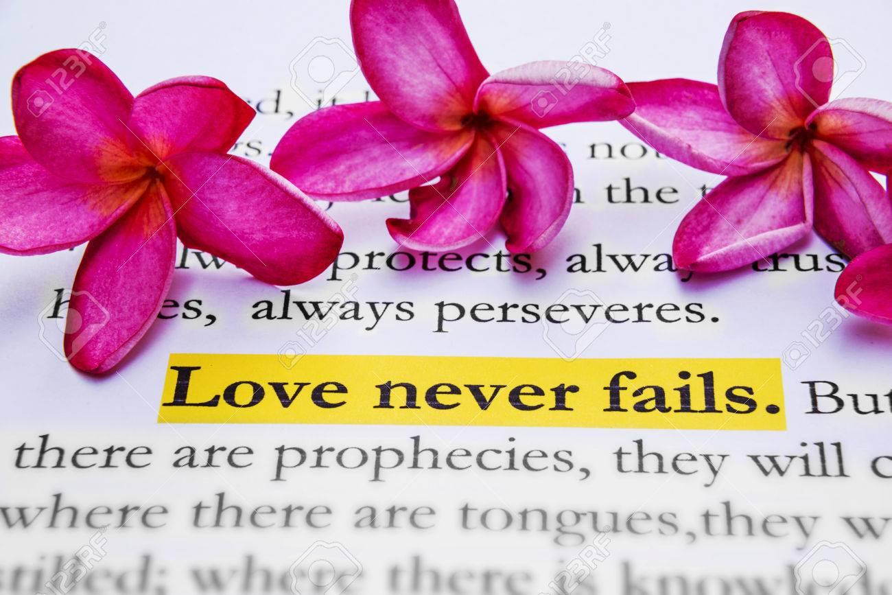 Love never fails. 1Corinthians 13:8, Holy bible. Stock Photo - 28635737