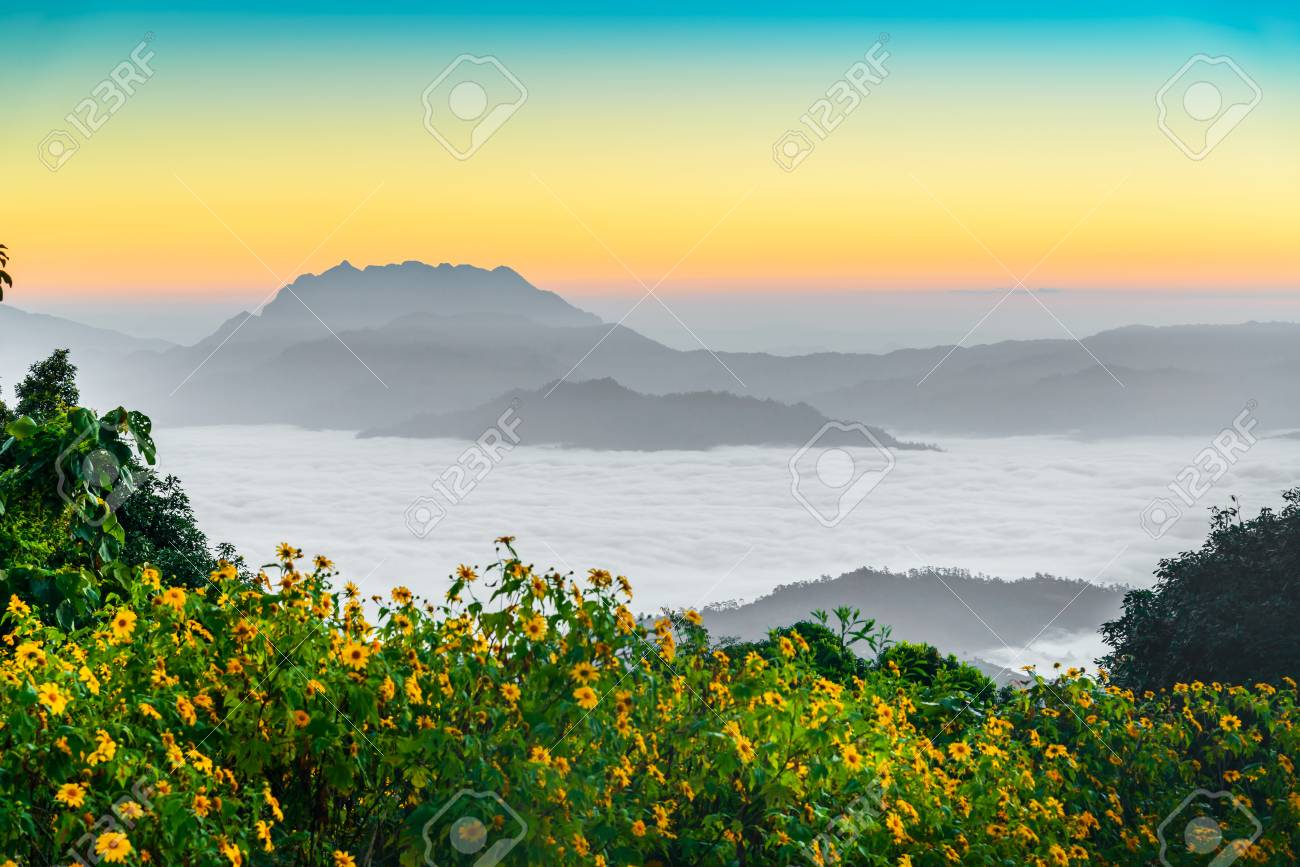 Morning sunrise over mist , Huai Nam Dang National Park, Chiang Mai, Thailand, landscape, travel and nature concept - 69335612
