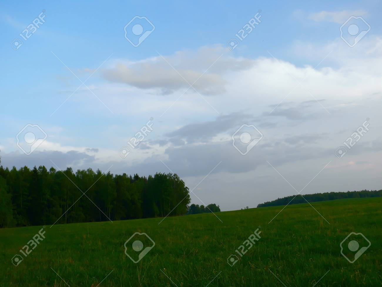 Summer meadow. Clouds. Stock Photo - 7898554