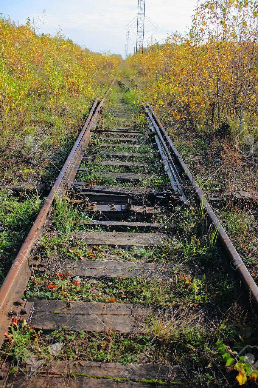 https://previews.123rf.com/images/pali/pali1112/pali111200167/11806417-The-old-railway-Grass--Stock-Photo.jpg