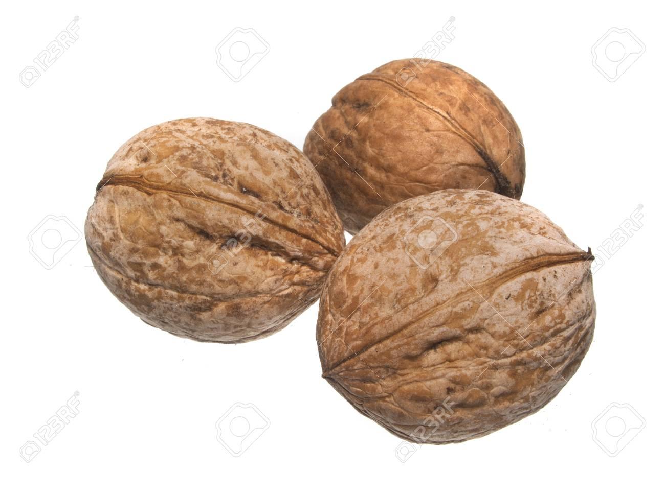 nut isolated on white background - 111164536