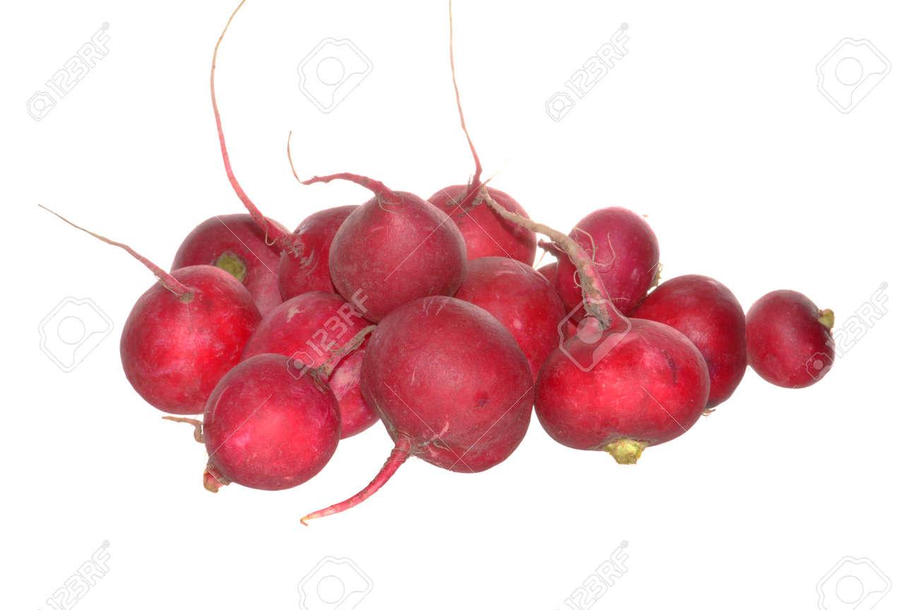 radish isolated on white background - 172056524