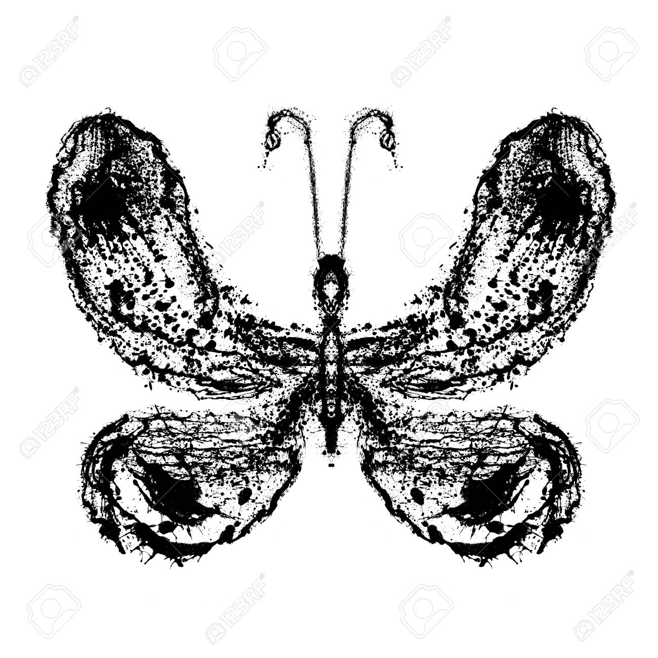 Abstract butterfly. Grunge splash draw paint Stock Photo - 12069468