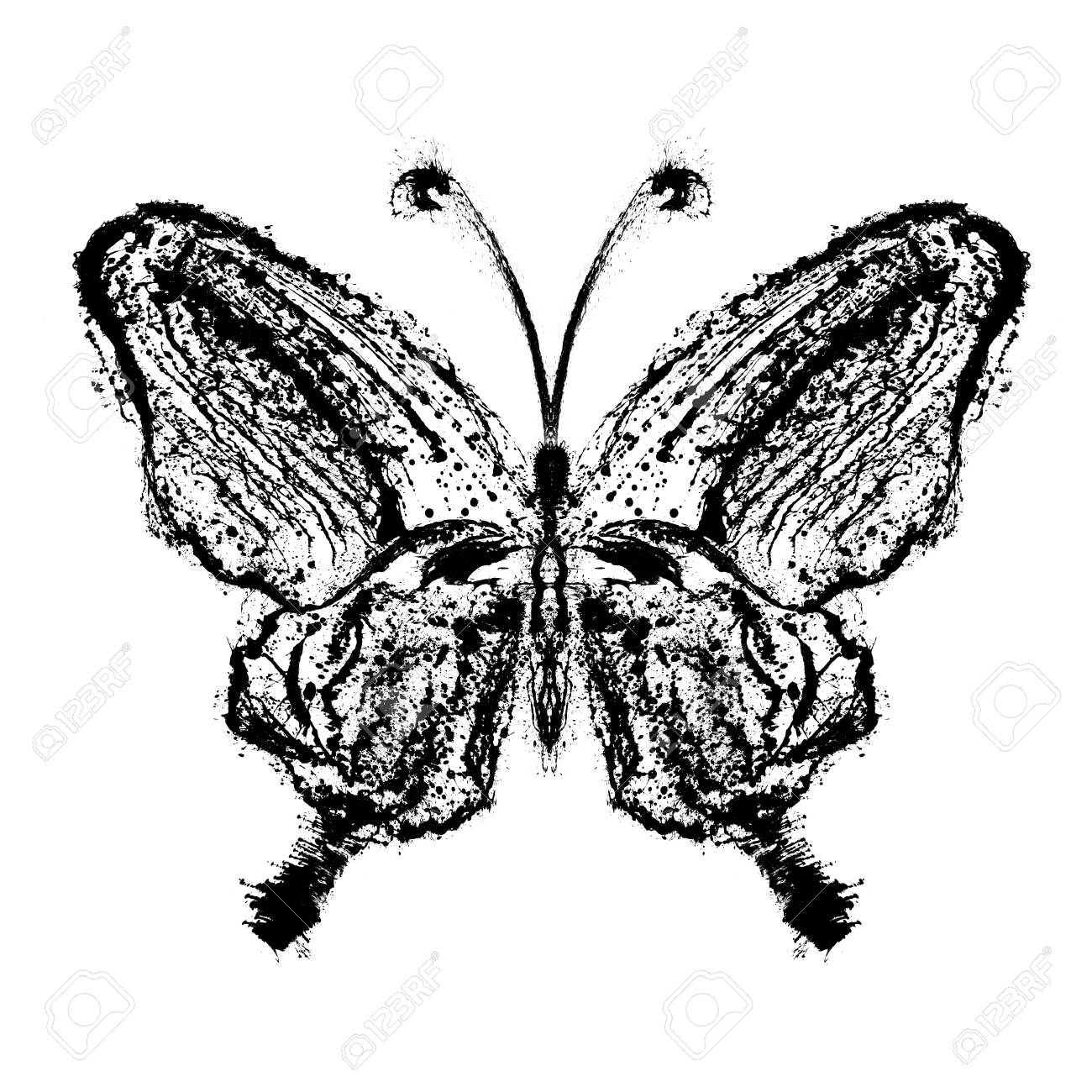 Abstract butterfly. Grunge splash draw paint Stock Photo - 12069471