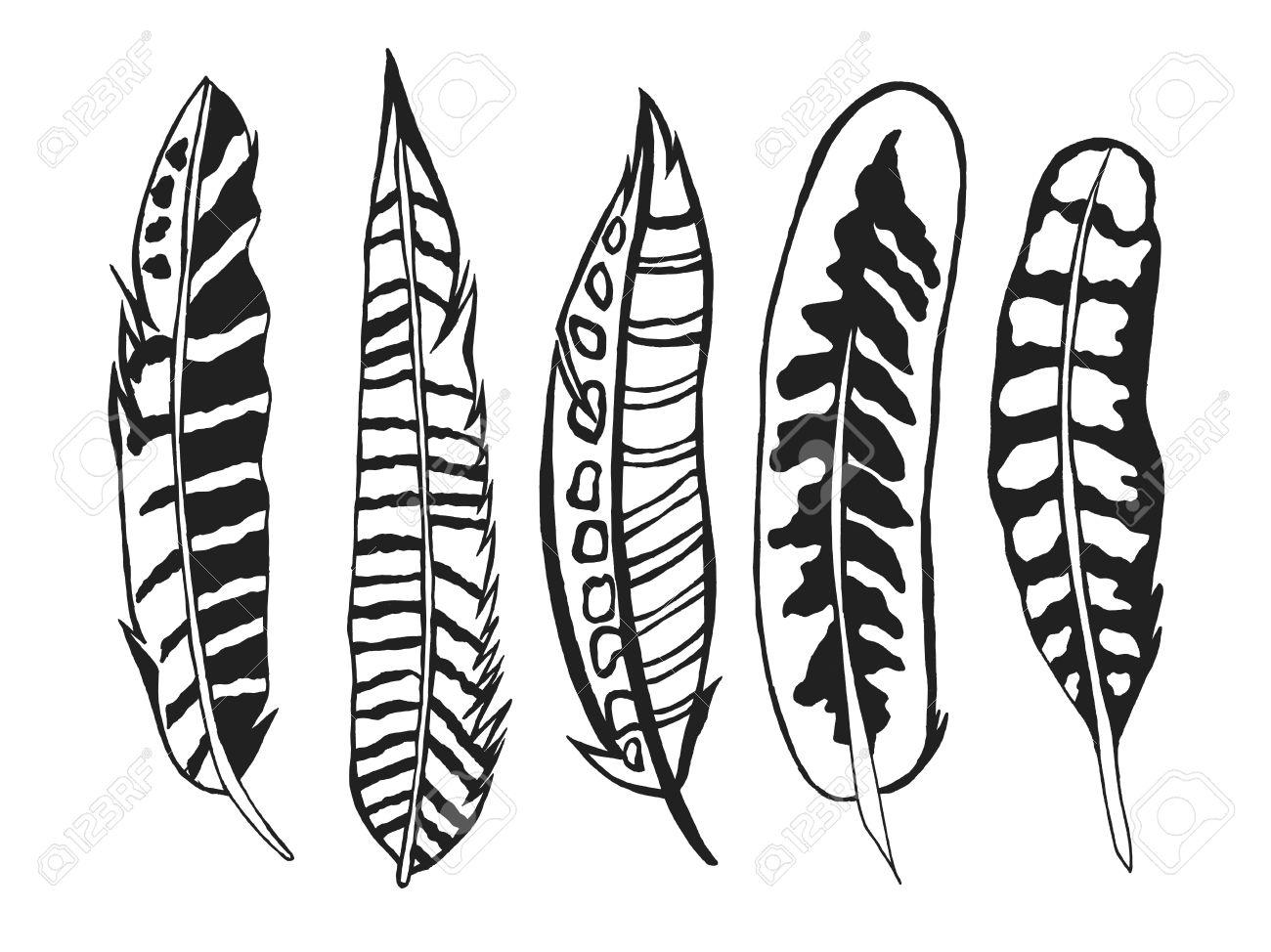 Plumas Tribales Establecen. Mano Blanco Y Negro Dibujado Garabato ...