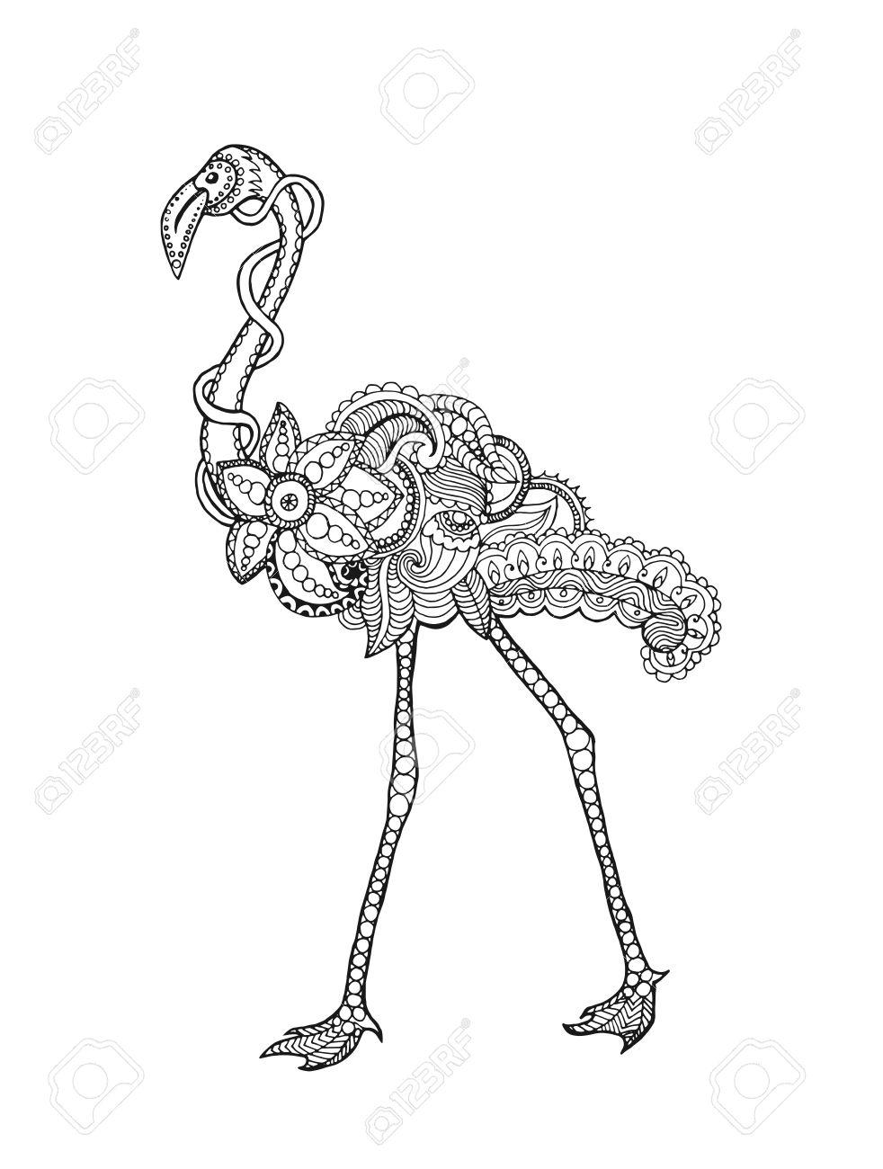 Pájaro Del Flamenco. Mano Blanco Y Negro Dibujado Animales Garabato ...