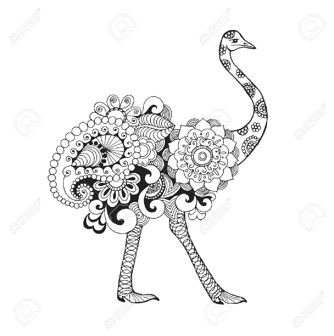 ostrich bird black white hand drawn doodle animal ethnic