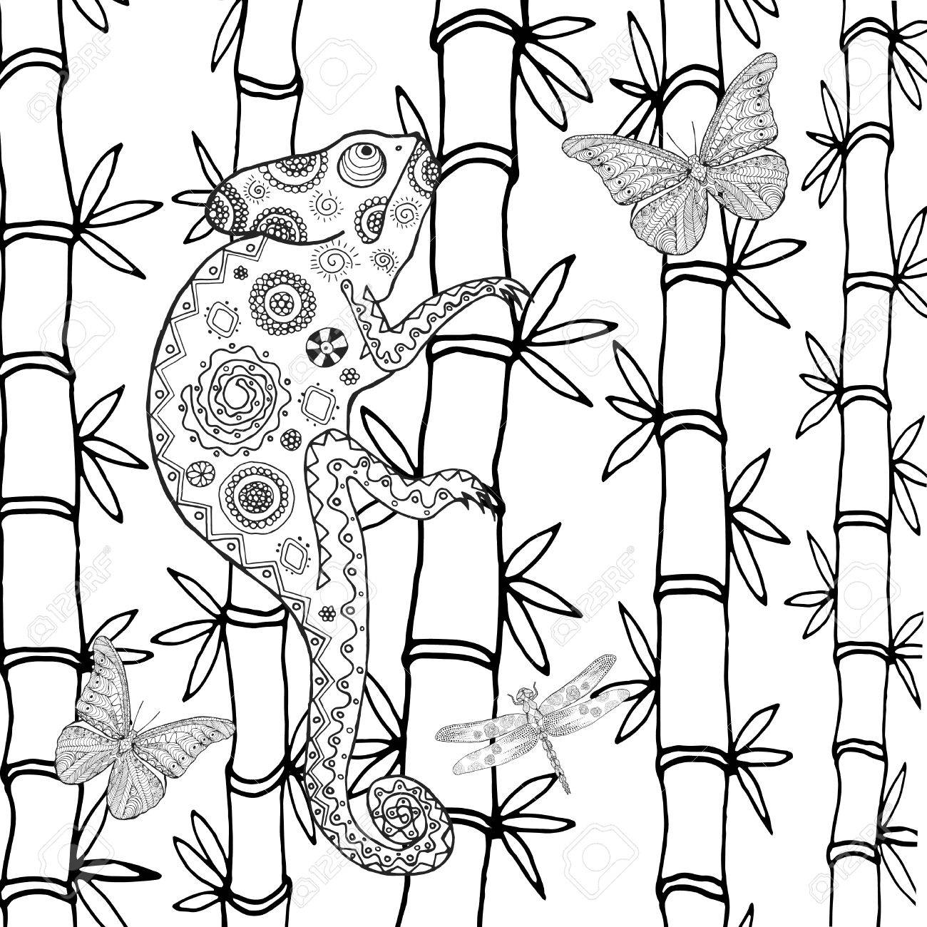 Chameleon Coloring Page Royalty Free Cliparts, Vectors, And Stock ...