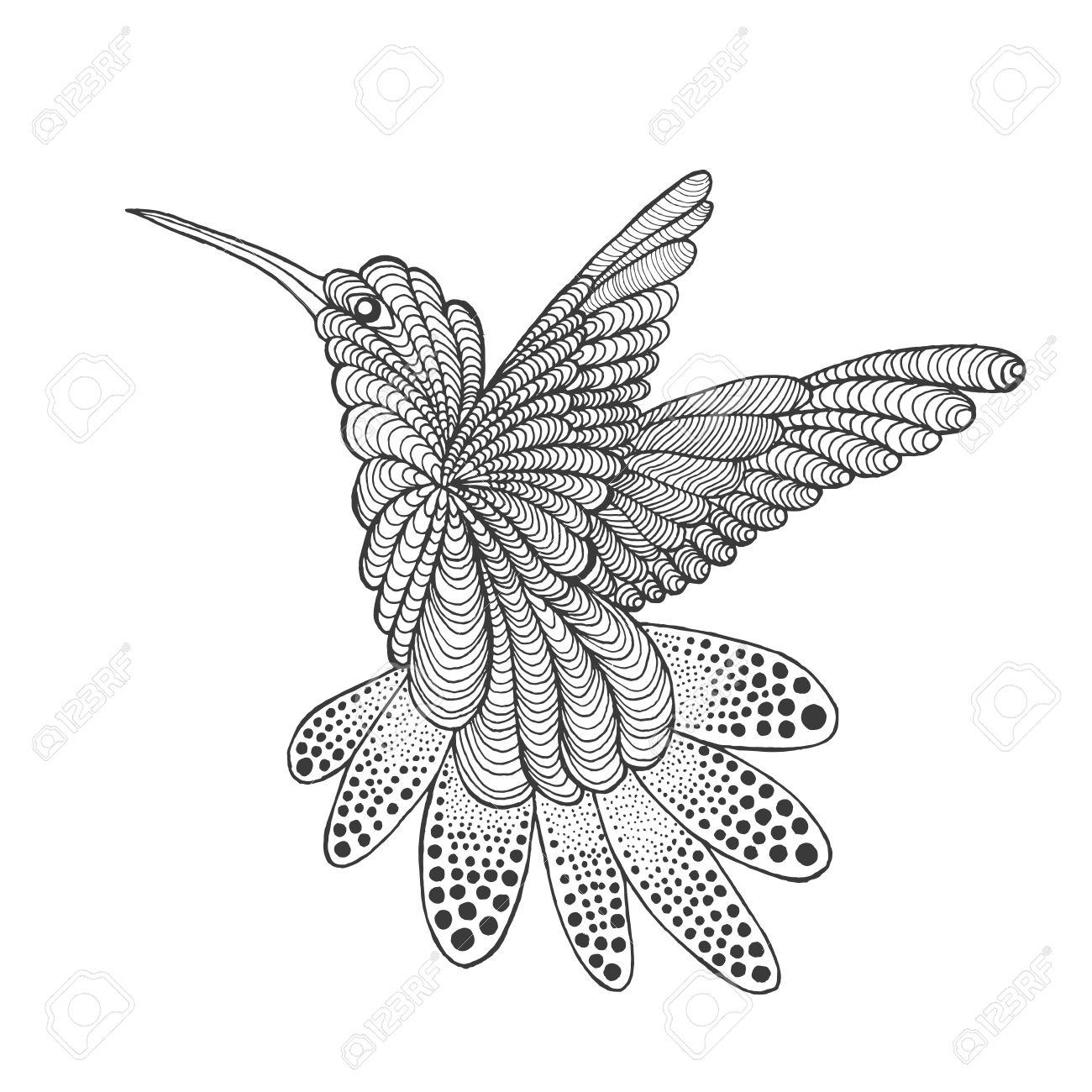 Colibrí Estilizada Zentangle Animales Negro Blanco Dibujado Mano