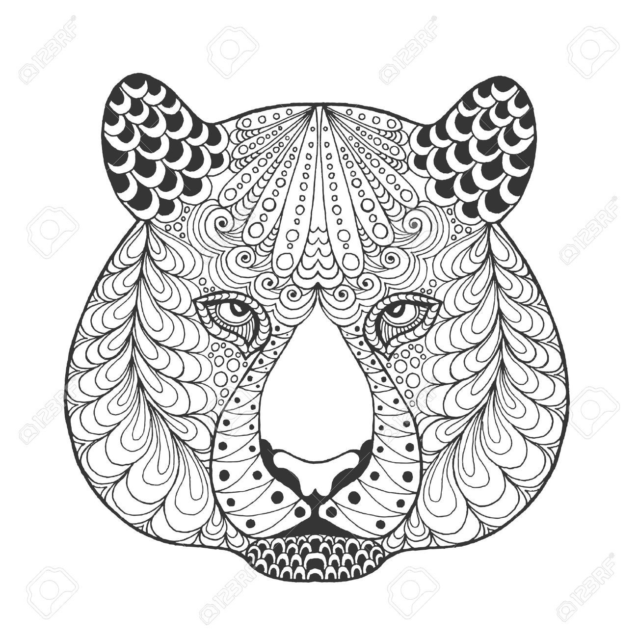 indian tigers stock photos royalty free indian tigers images and