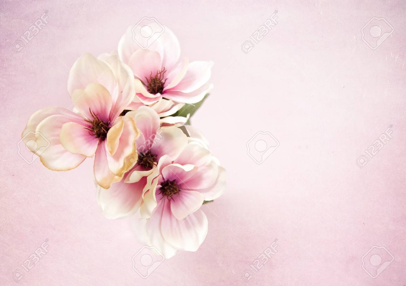 Beautiful White And Pink Silk Flowers On A Pink Background Stock