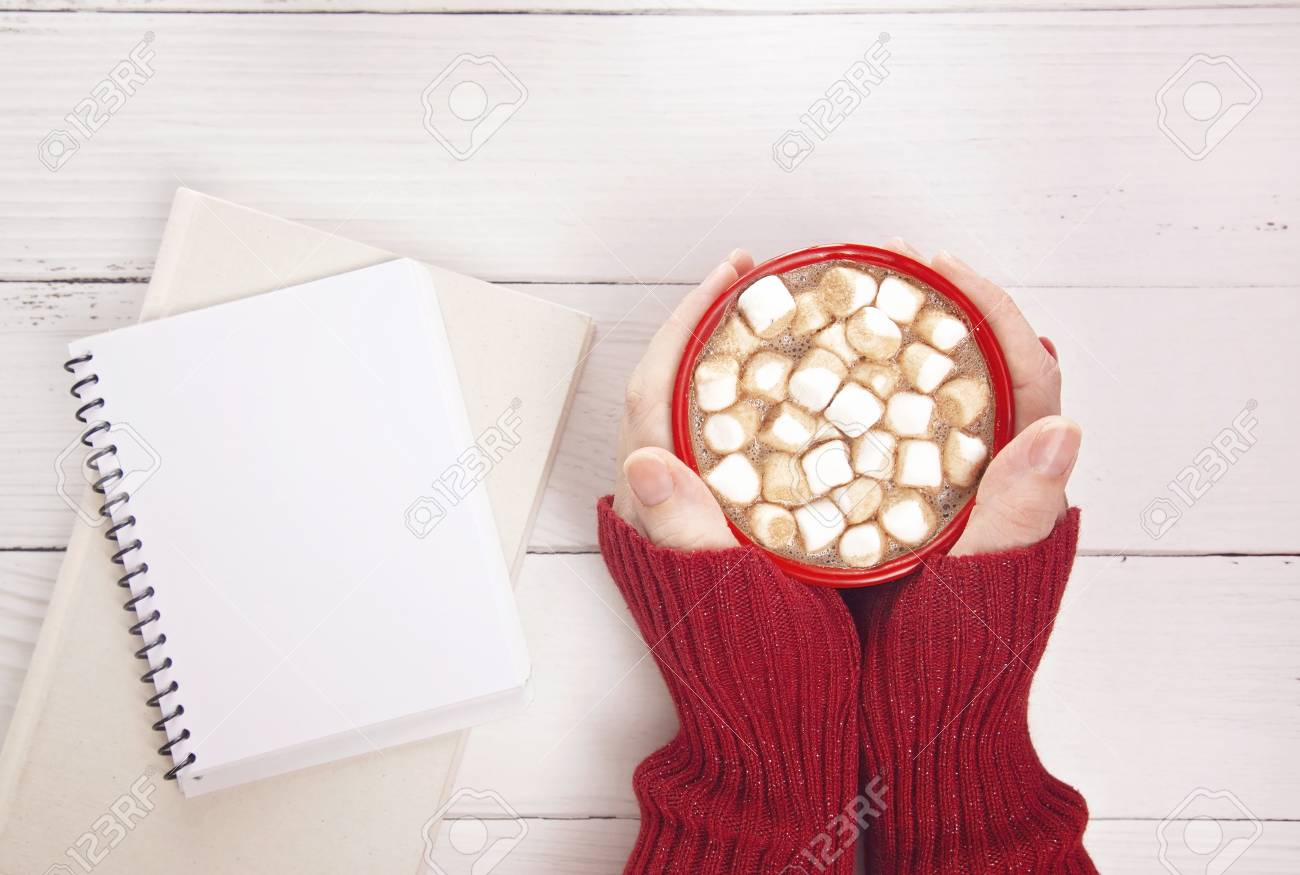 A Personal Holding a Mug of Hot Chocolate with Marshmallows with a Novel to Read - 112030478