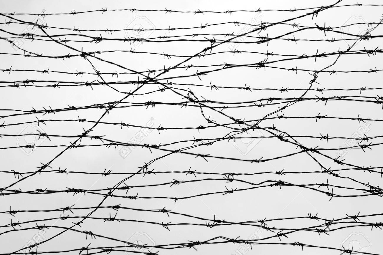 Nice Barb Wire Fence Building Gallery - Wiring Schematics and ...
