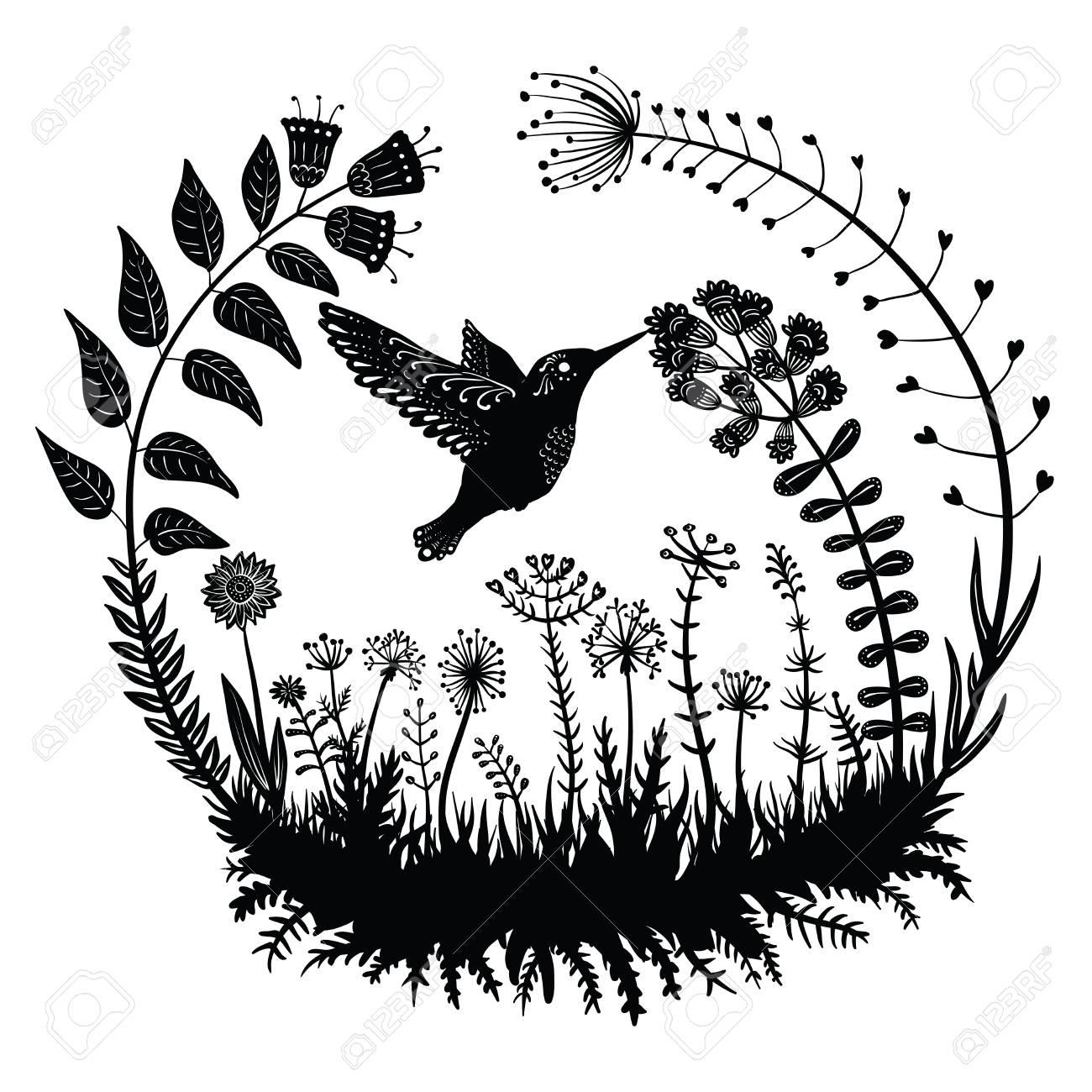 Vector Illustration Stylisé Nectar Colibri Potable De La Fleur Vol Doiseau Exotique Dans Lherbe Sur Le Terrain Plantes Dekrativnye Dans Un