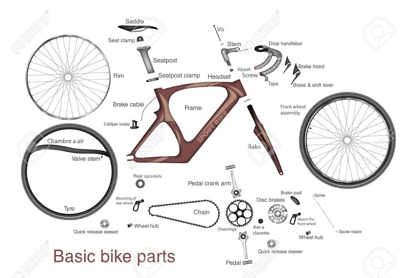 Infographic Of The Main Bike Parts With The Names Royalty Free