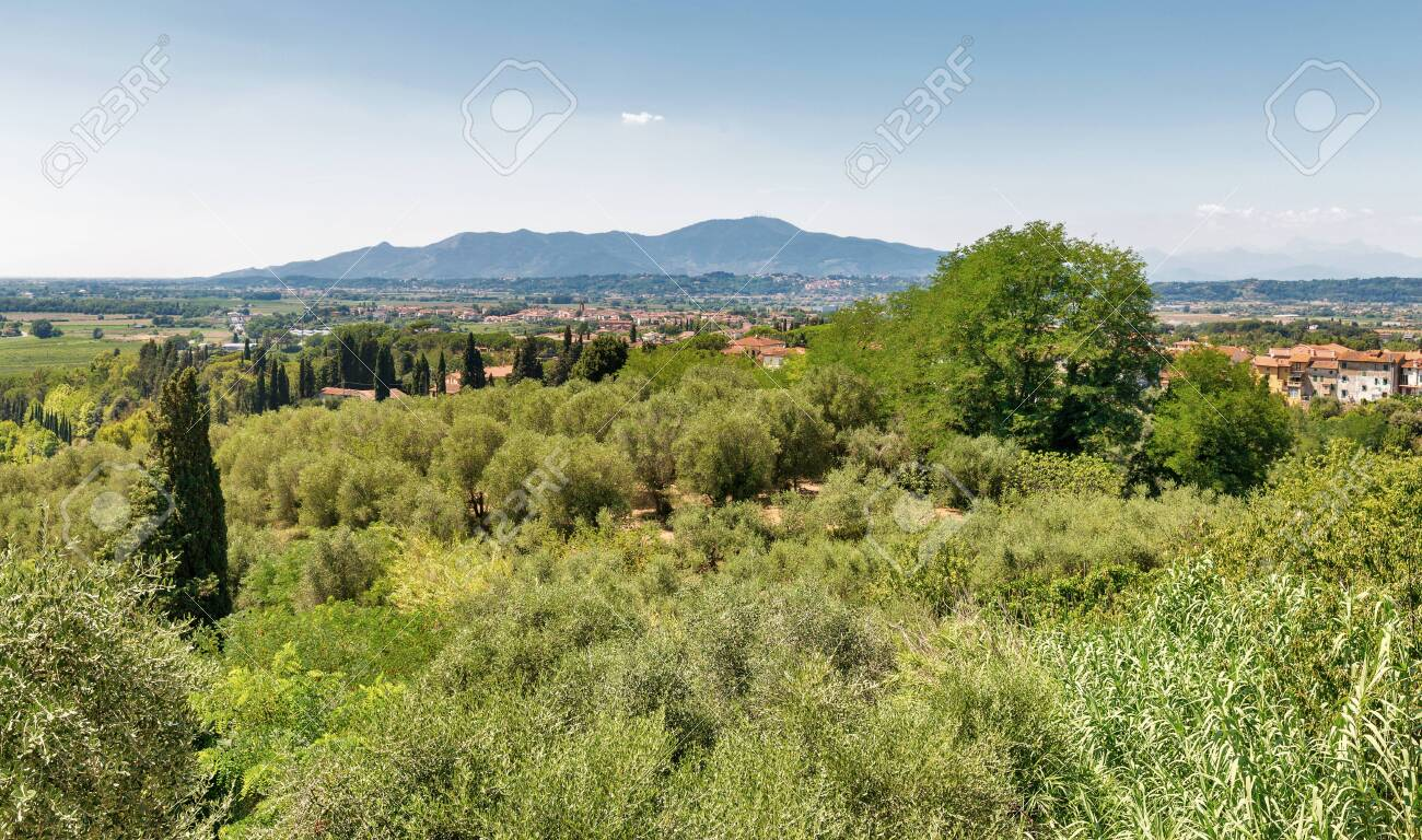 Mediterranean landscape view from the Montopoli hill. Montopoli in Val d'Arno is a municipality in the Province of Pisa in the Italian region Tuscany. - 132755428