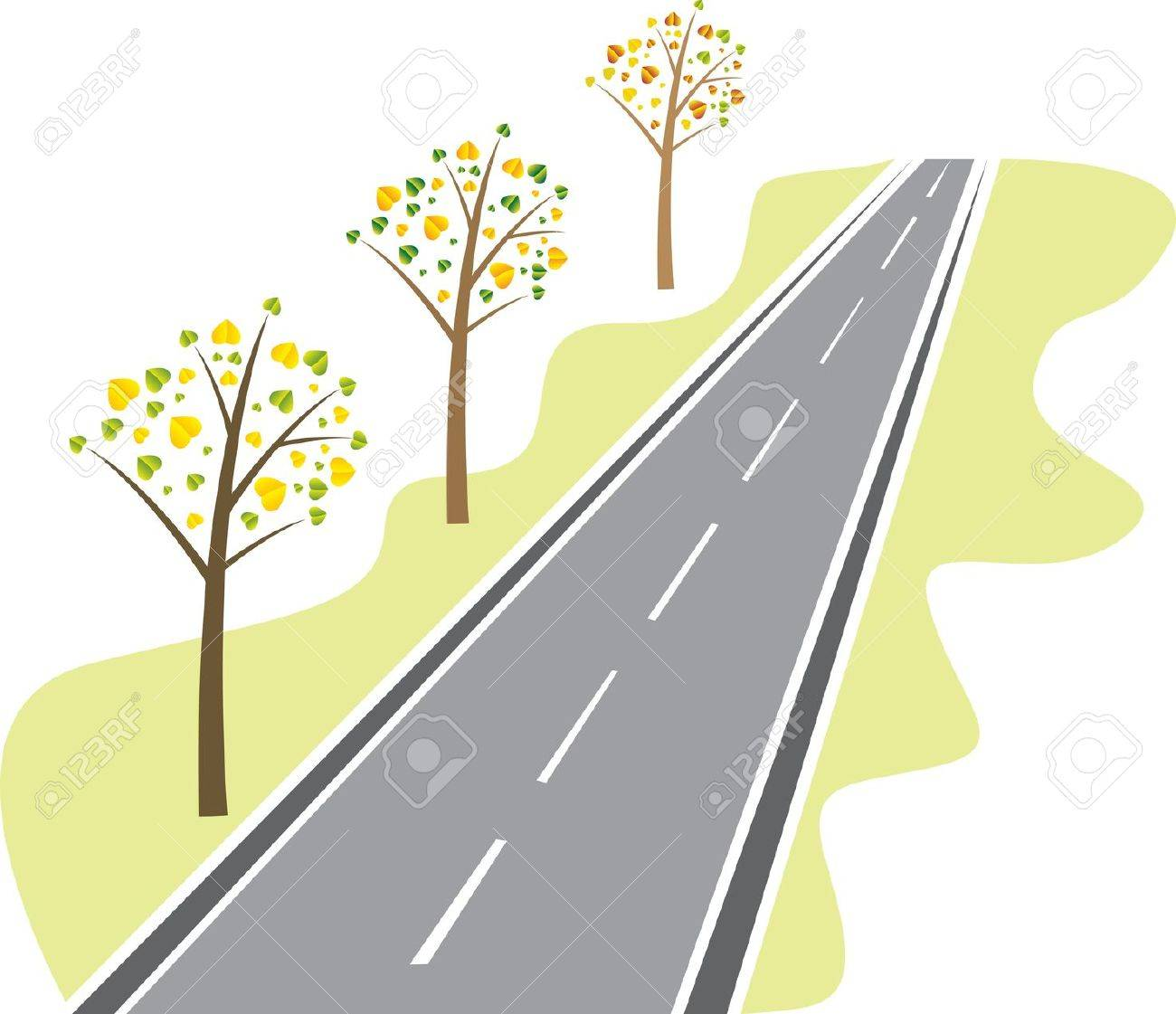 trees with leaves from the asphalt road - 12319661