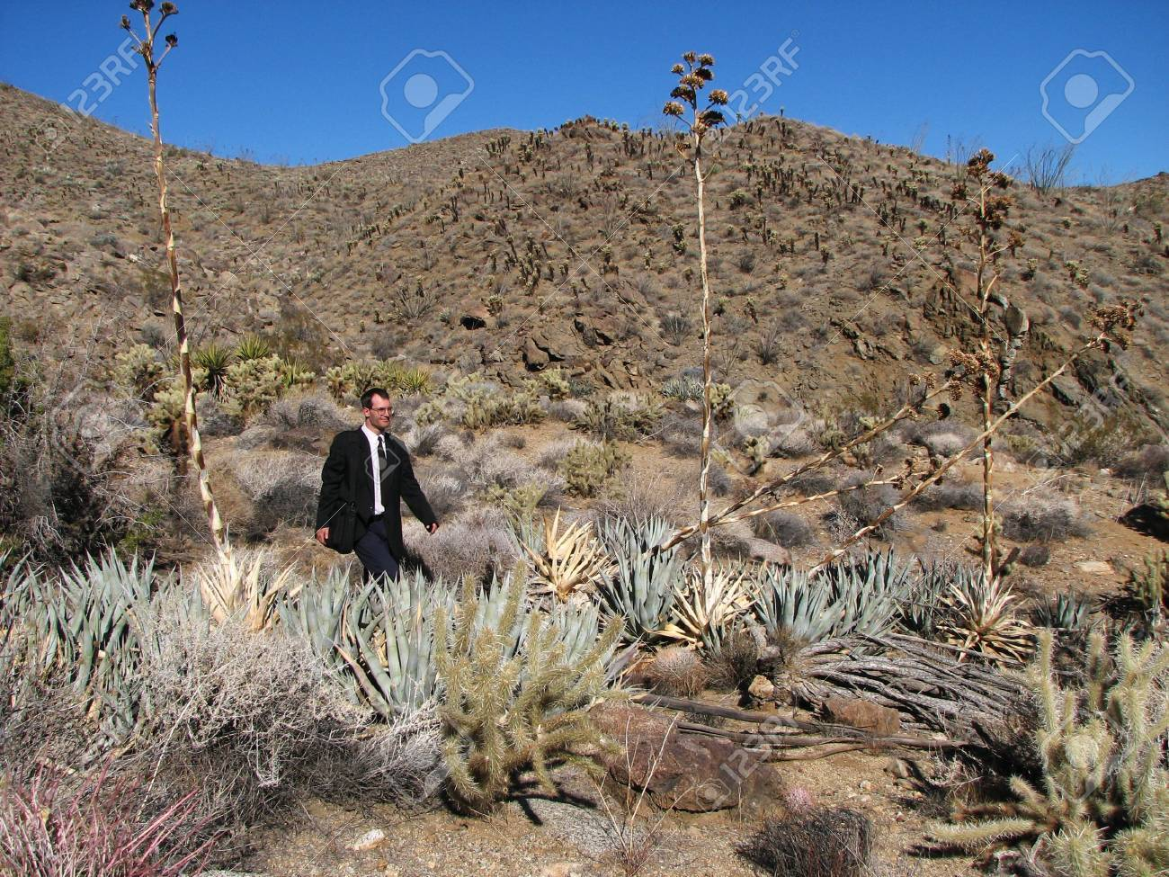 a man in business attire walks through the desert with a laptop case Stock Photo - 3303322