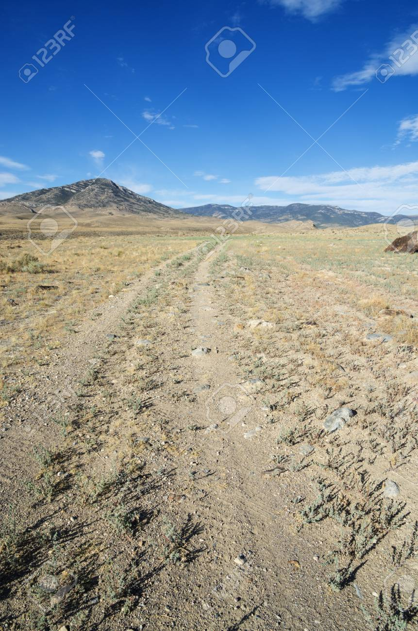 vertical image of doubletrack gravel road heading towards distant Nevada mountains Stock Photo - 24878850