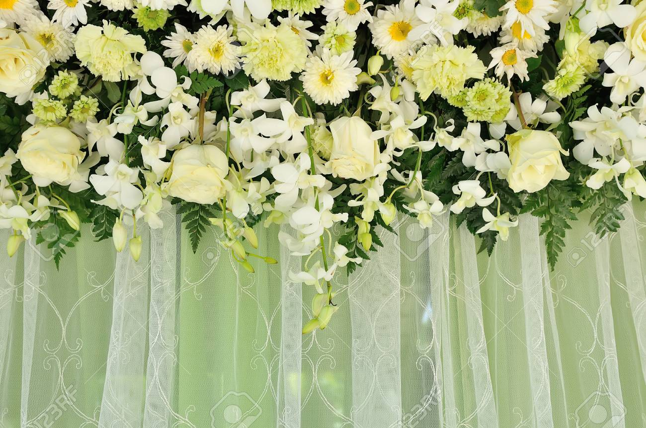 Green And White Backdrop Flowers Arrangement Stock Photo Picture