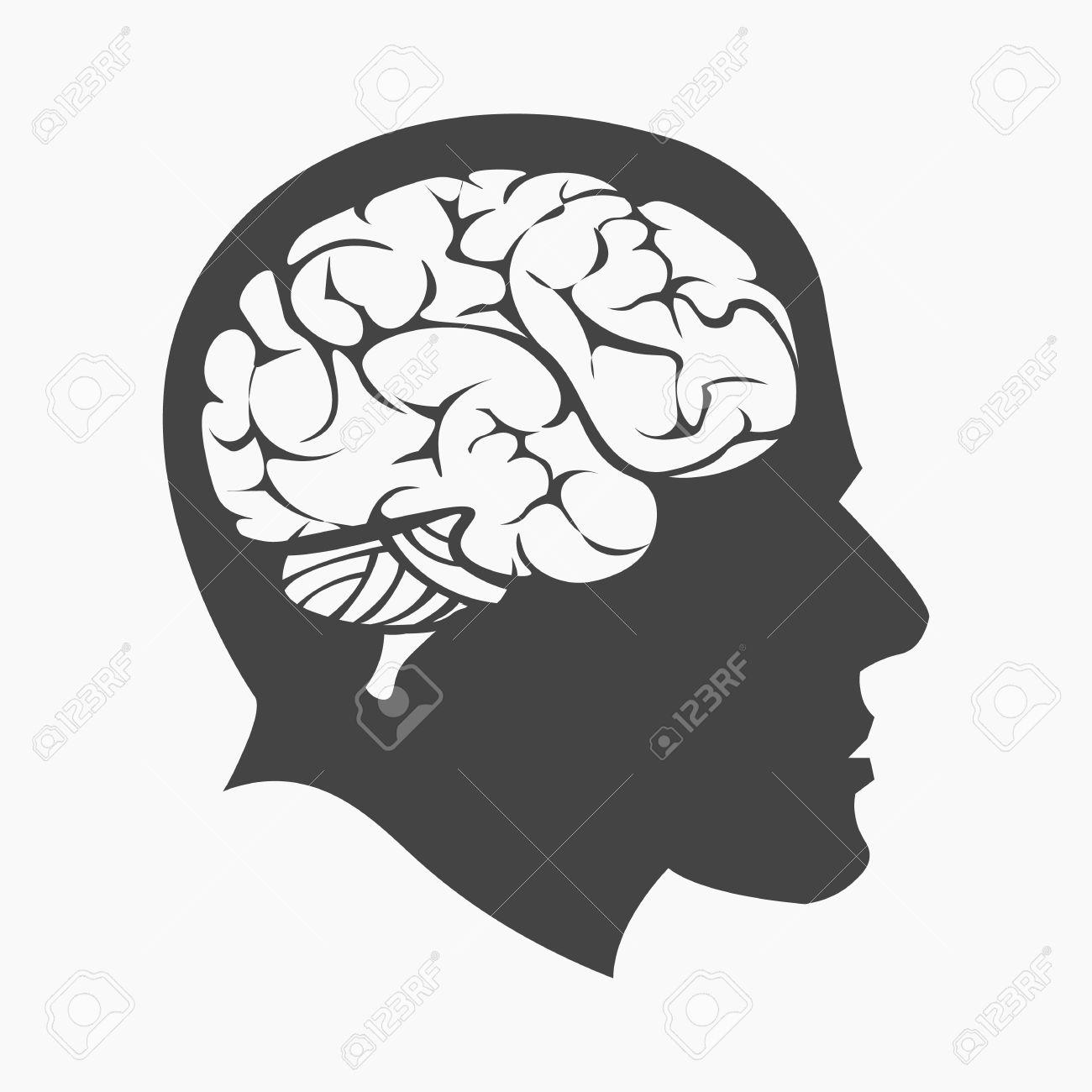 Icono Del Cerebro. Icono De La Educación Individual De La Escuela ...