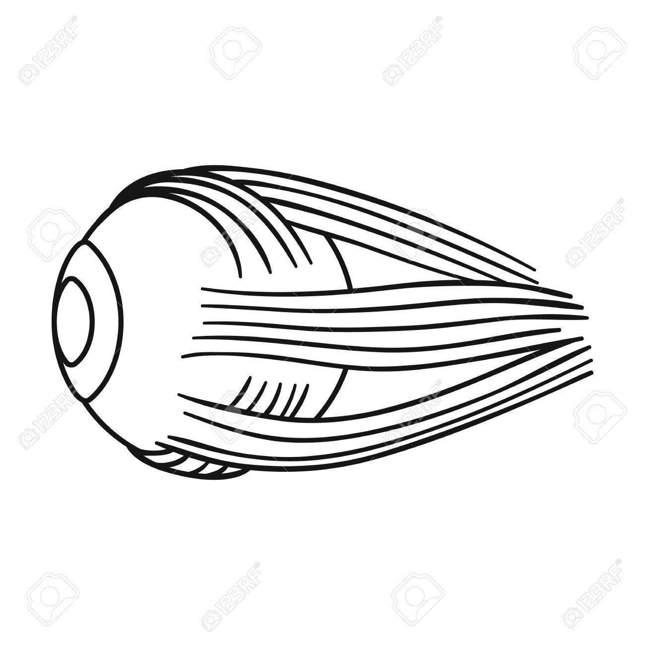 Hermosa Diagrama De Marcado De Ojo Humano Patrón - Ideas de Anatomía ...