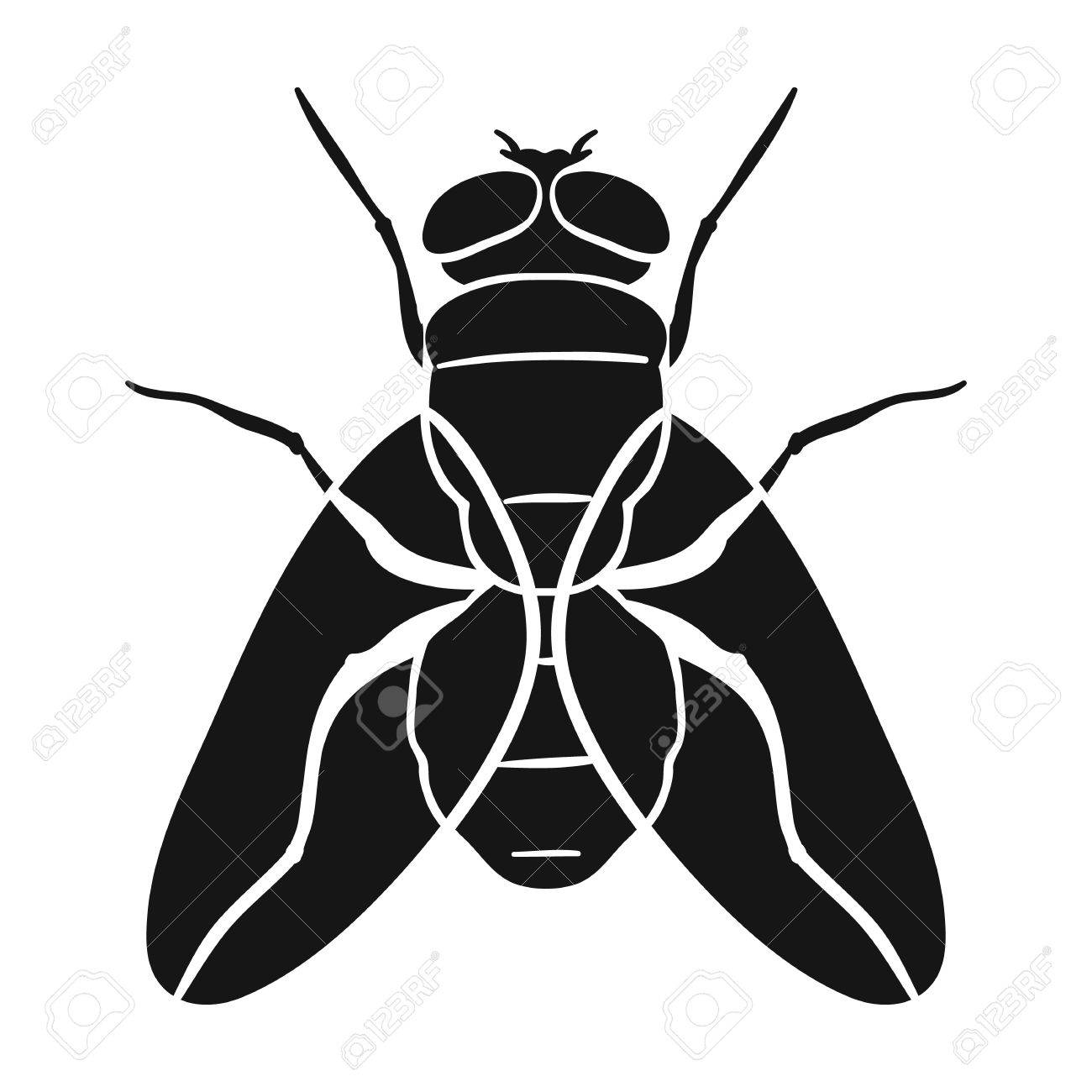 Fly icon in black design isolated on white background. Insects symbol stock vector illustration. - 67722611