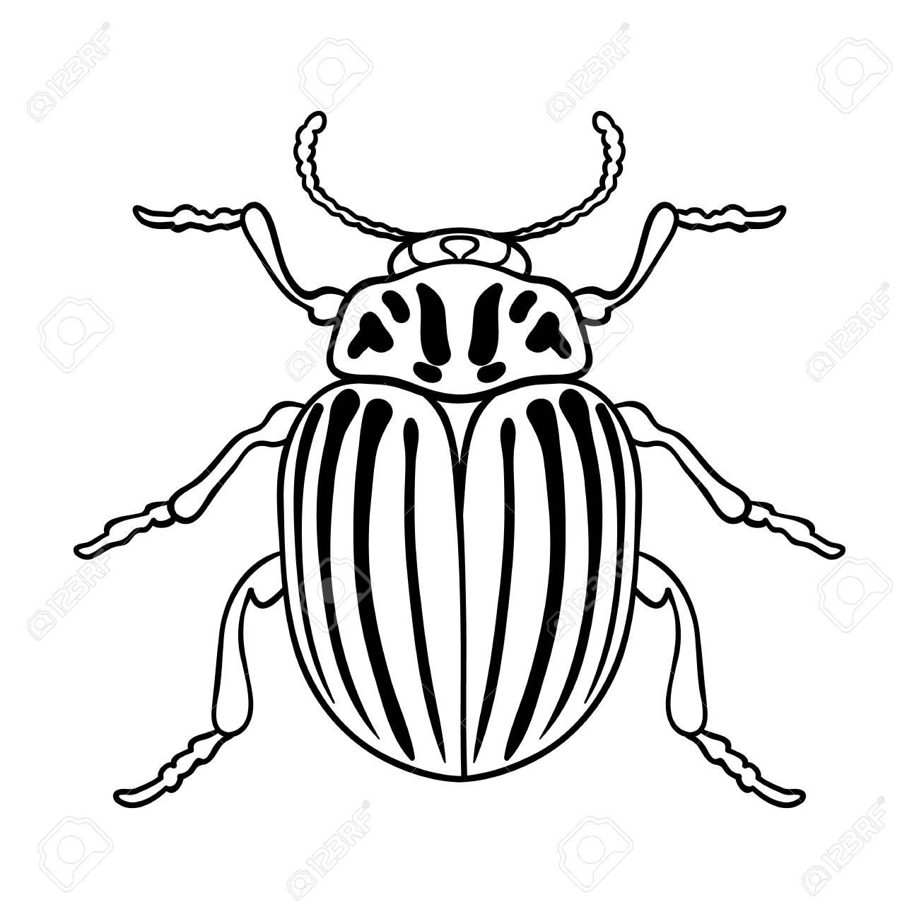 Icono De Escarabajo De La Patata En El Esquema De Diseño Aislado ...