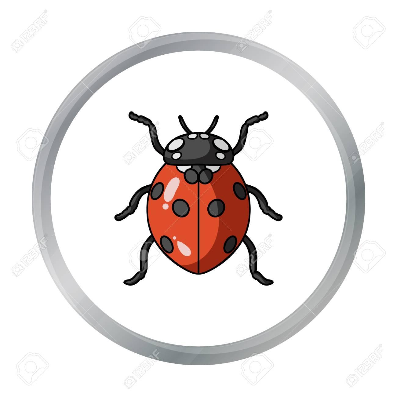 Coccinelle Symbole icône de coccinelle en style cartoon isolé sur fond blanc. insectes