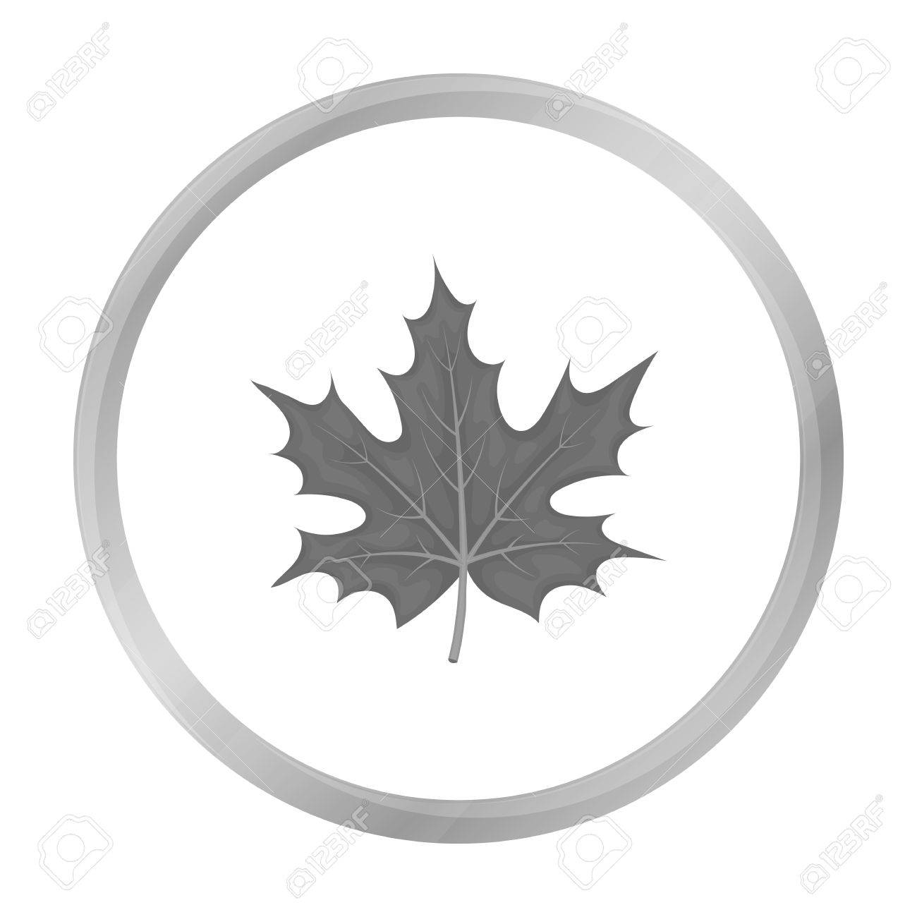 Maple Leaf Icon In Monochrome Style Isolated On White Background
