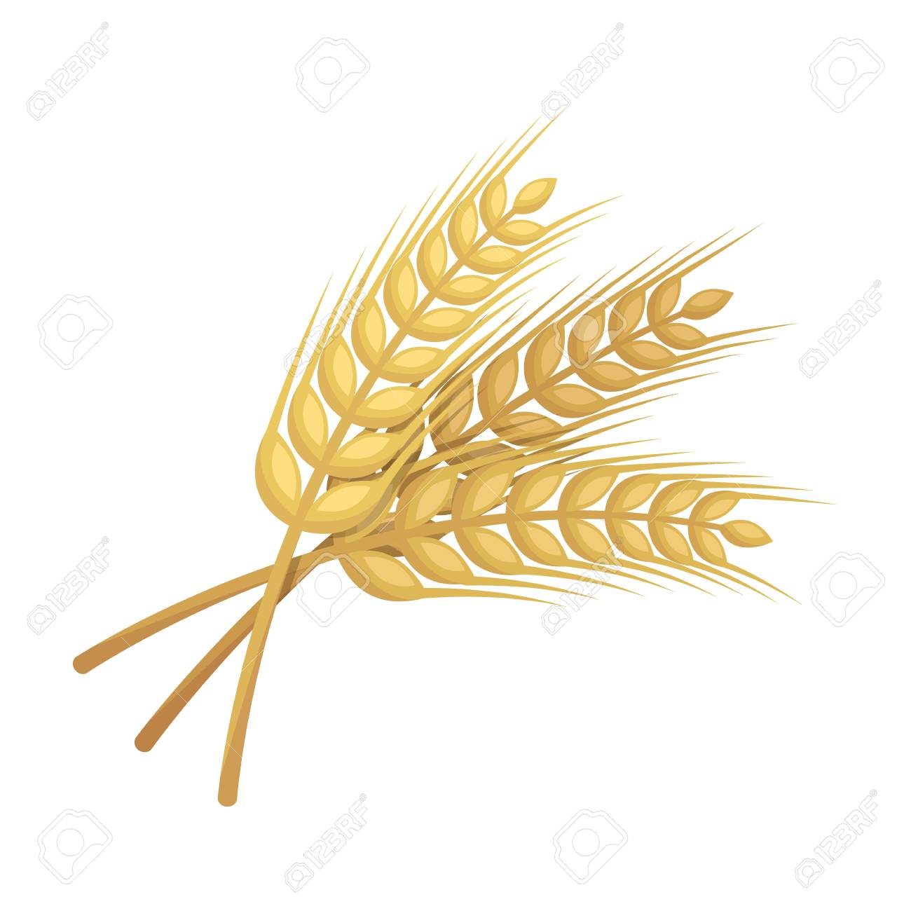 sprigs of wheat plant for brewing beer pub single icon in cartoon