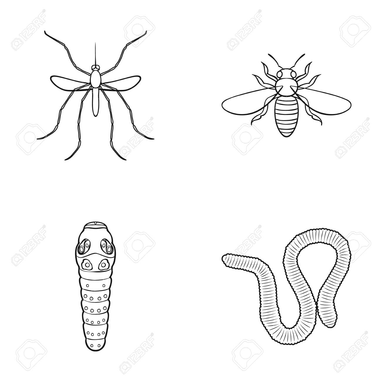 worm centipede wasp bee hornet insects set collection icons