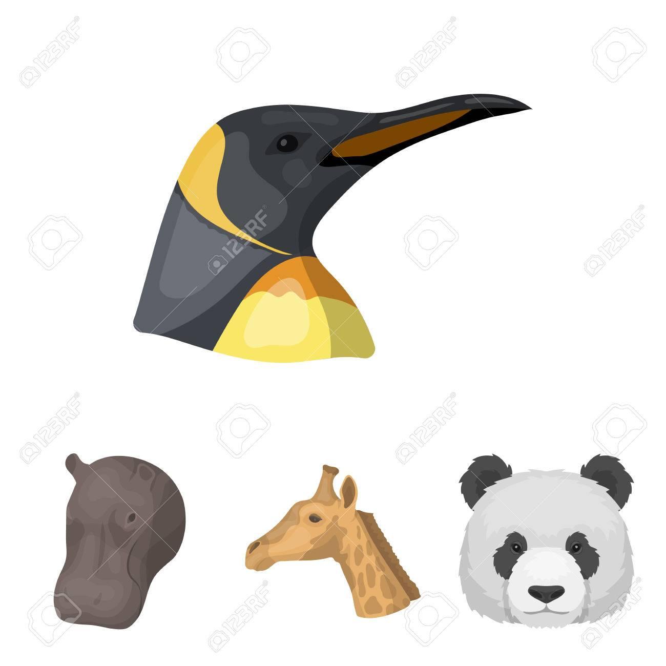 Panda Jirafa Hipopótamo Pingüino Animales Realistas Establecer
