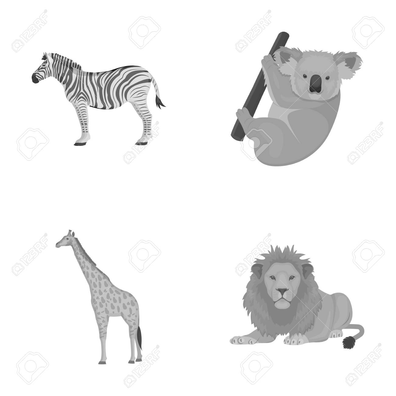 Cebra Africana, Koala Animal, Jirafa, Depredador Salvaje, León. Los ...