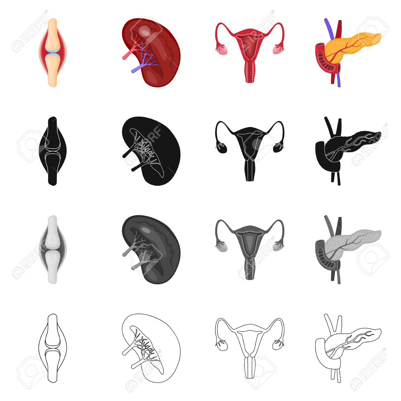 Vector design of biology and scientific icon. Collection of biology and laboratory vector icon for stock. - 124896808