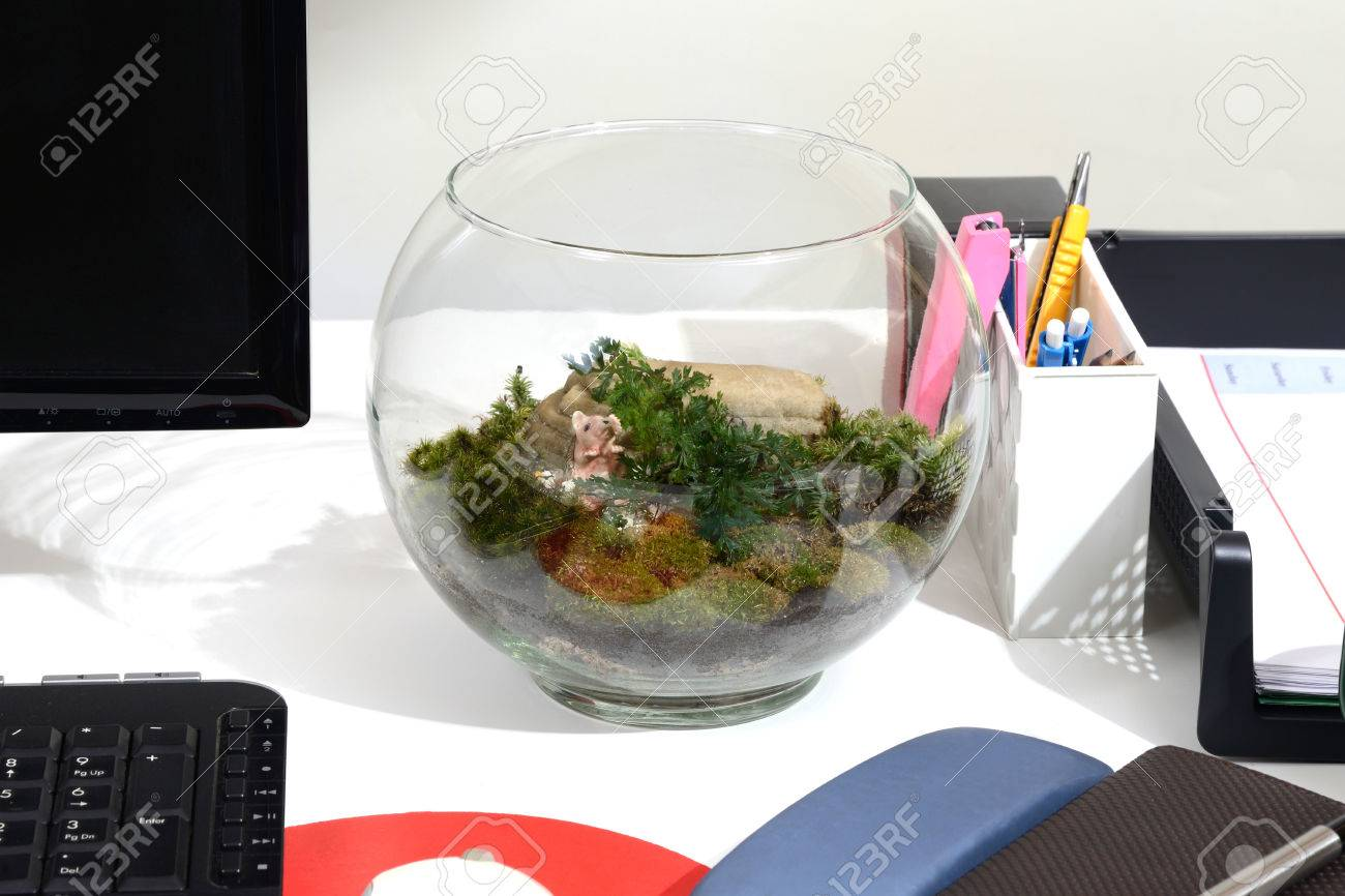 Make green in office with a little bottle of terrarium on working desk.  Stock Photo - Make Green In Office With A Little Bottle Of Terrarium On Working