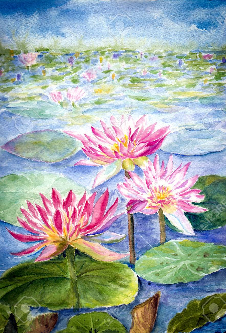 Water Color Painting Of Lotus Flower Stock Photo Picture And
