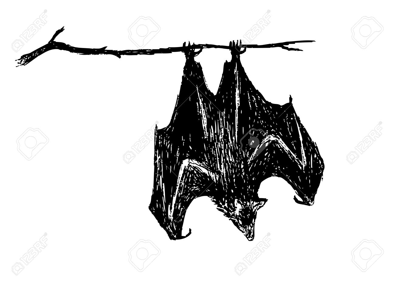 Hand drawing of upside down bat by pencil use for halloween