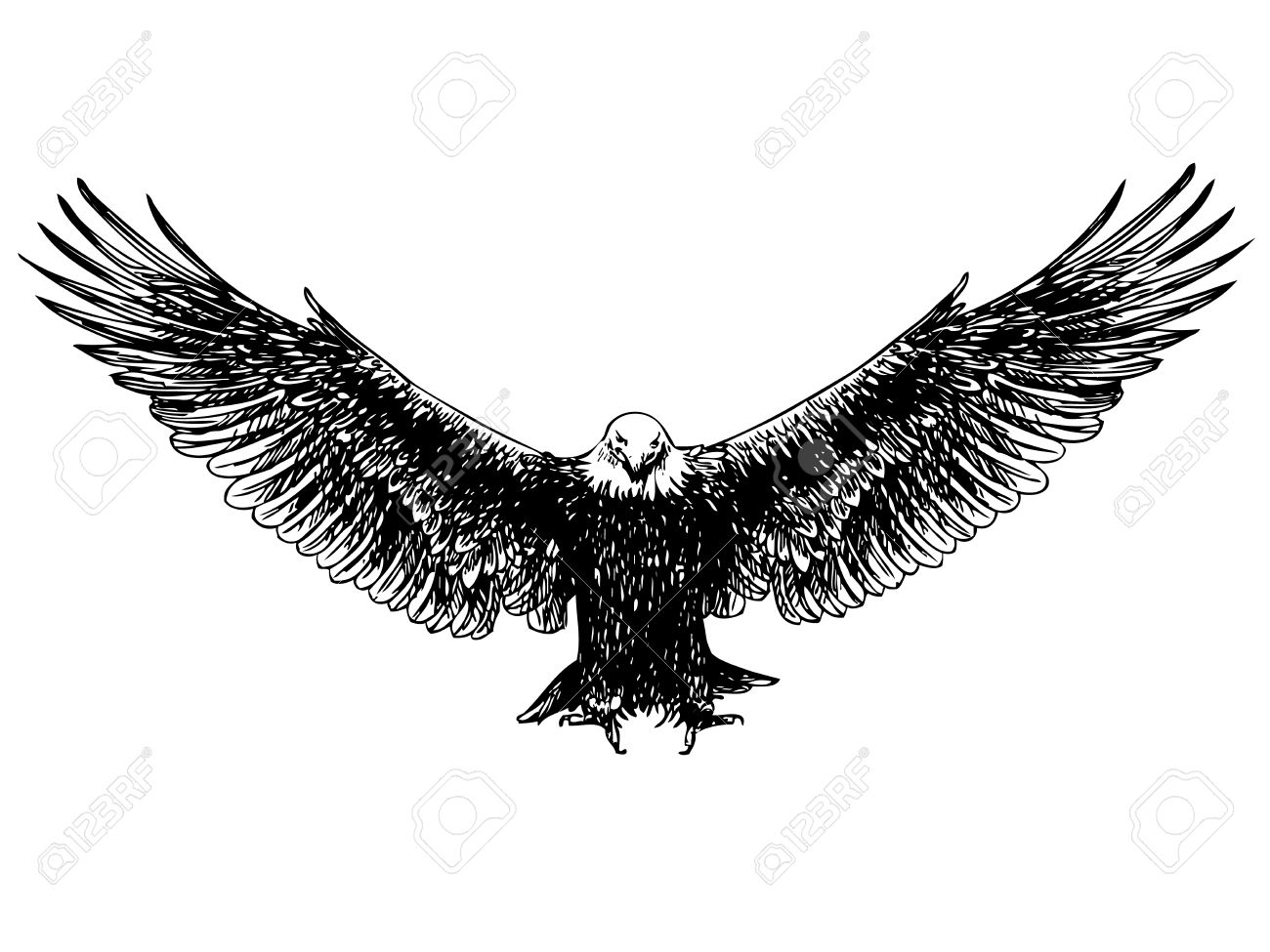 Freehand sketch of flying eagle hand drawn on white background stock vector 46096843