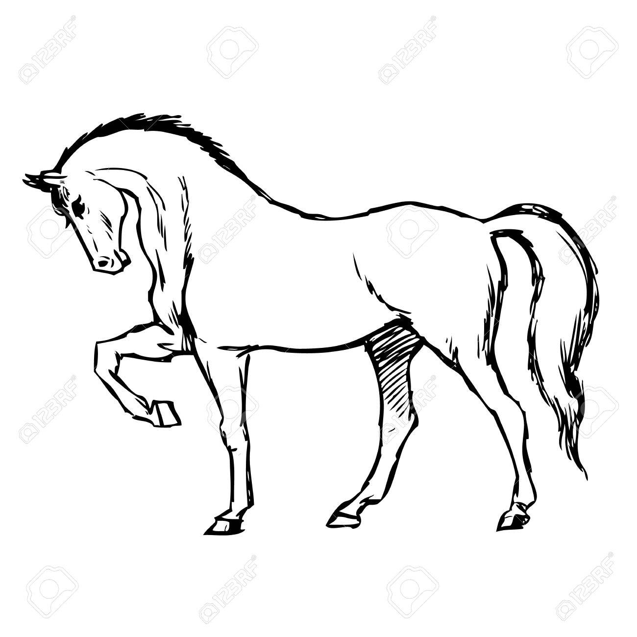 Freehand Sketch Illustration Of Horse Doodle Hand Drawn Royalty Free Cliparts Vectors And Stock Illustration Image 80790151