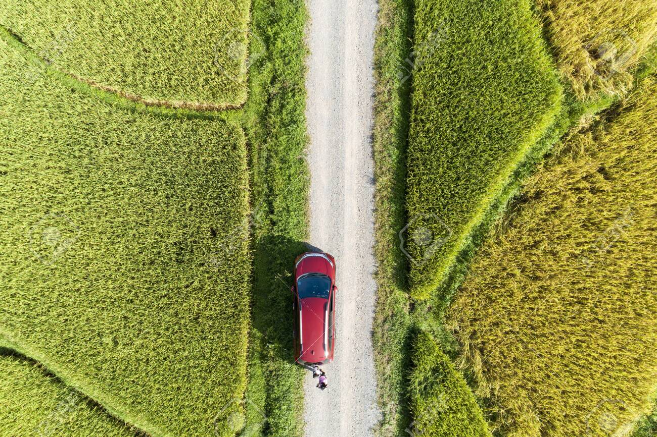 Aerial Drone Photography Top Down Of Red Car With Green And Golden Stock Photo Picture And Royalty Free Image Image 137651731