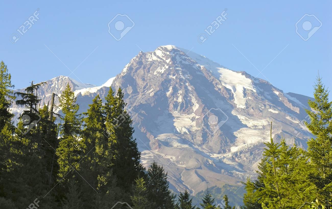 Vegetation near Mount Rainier, Washington Stock Photo - 12164627