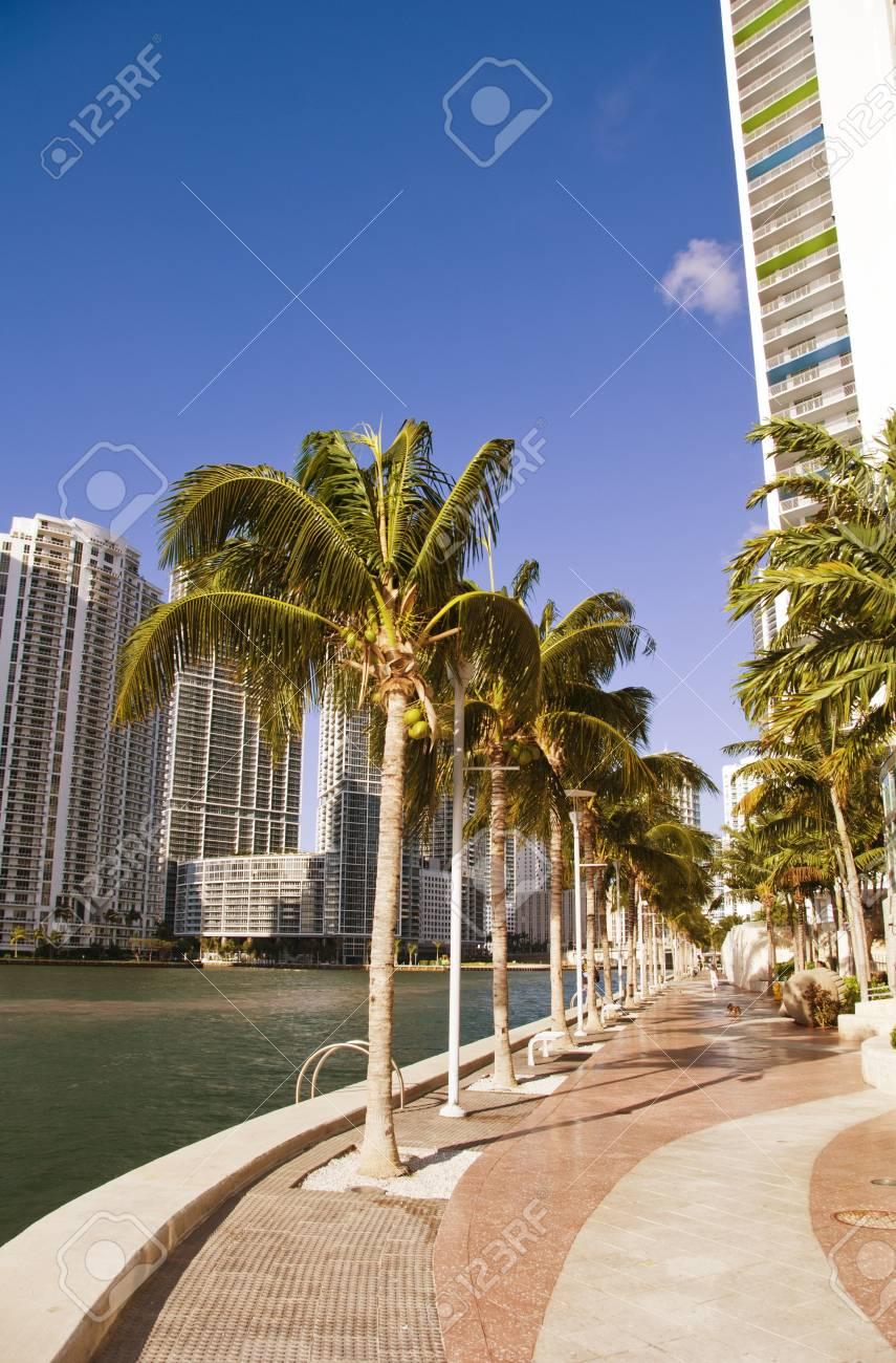 Miami Beach Coastline in Florida, U.S.A. Stock Photo - 12171587